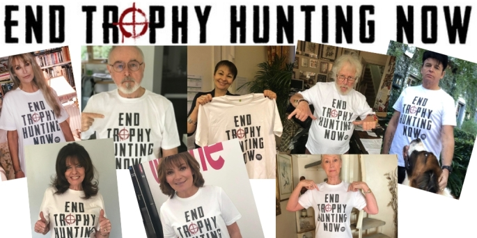 end trophy hunting now twitter post